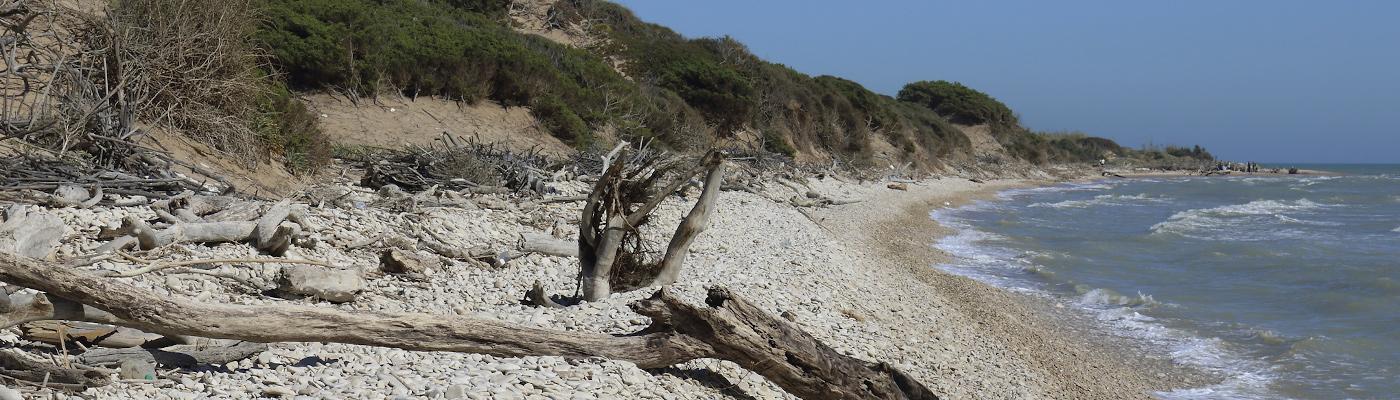 Vista concessione Irminio lato mare