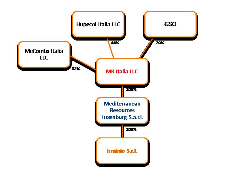 Schema delle partecipazioni del gruppo in Irminio